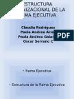 estructuraorganizacionaldelaramaejecutiva-130211212339-phpapp01