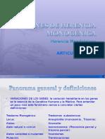 Genética Articulación_3