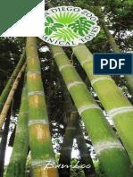 botanical_tour_bamboo.pdf