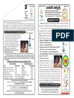 Pamplet Final