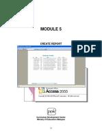 Microsoft Access - Module 5 - Report(1)