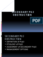 Secondary Puj Obstruction
