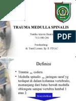 Trauma Medulla Spinalis - Via