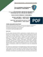 Articulo de Investigacion de Eryngium foetidium