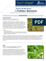 apple-pests-ESP.pdf