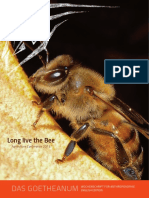 Bees Creators of Relationships