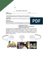 Guia Ejercicios 3a Socialización