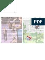 Revista media parte 4