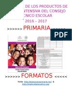 Formatos Productos CTE Primaria