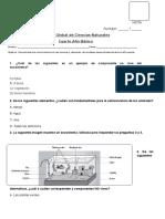 Pruebacoef2nat 141130192152 Conversion Gate01