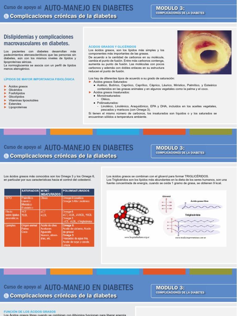 fosfolípidos vs triglicéridos y diabetes