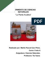 ExperimentEXPERIMENTO DE CIENCIAS NATURALES MARTIN CAROo de Ciencias Naturales Martin Caro
