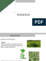 diplomado-malezas.pdf