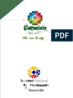 Resumen Plan Nacional Buen Vivir