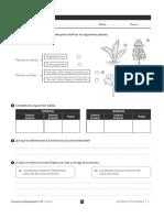 Repaso-naturales 5--primaria.pdf