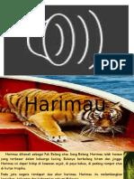 Harimau (tahun 3) sk negaraku tercinta