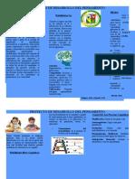 Proyecto de Desarrollo del Pensamientos-Habilidades Cognitivas.docx