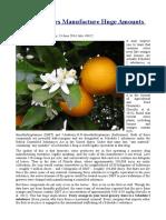 Citrus Growers Manufacture Huge Amounts of DMT.odt