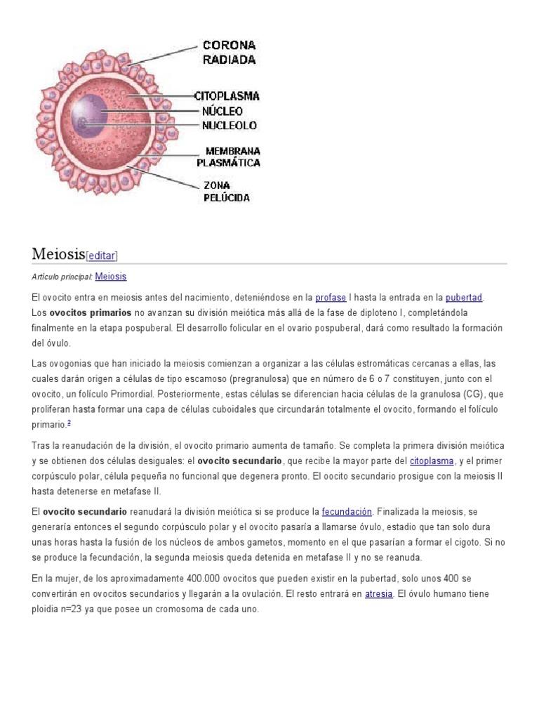 Único De Hecho Reanudar Editar Elaboración - Colección De Plantillas ...
