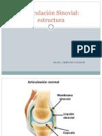 Articulación Sinovial.ppt
