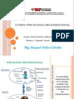Rol Del Psicólogo Organizacional