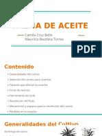 Palma de Aceite