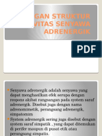 15 Ppt Adrenergik New