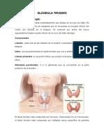 TIROIDEOCTOMIA.docx