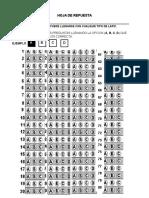 HOJA DE REPUESTA DE 80 2016.docx
