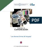 lec_15_DiversasFormasLenguaje.pdf