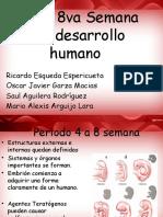 4ta a 8va Semana Del Desarrollo Humano