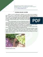 Rezidba maline i kupine.pdf