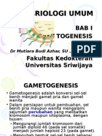 embrio-umum-1.ppt