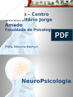 Aula 5. Neuropsicologia - Laudo Neuropsicológico