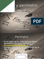 rea_y_per_metro_10.0.ppt