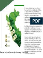 Mapa Esparrago.pptx