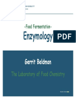 Food Fermentation With Enzymes