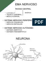 Biologia Humana - Neuro
