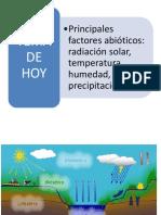 Diagrama de intro a eco