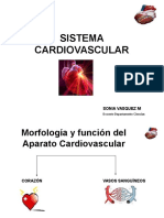 Sist. Cardiovascular Sonia