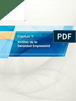 Analisis de La Densidad Empresarial INEI