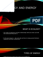 ecology and energy notes