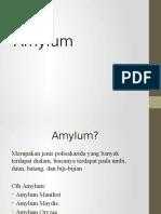 2 Amylum.pptx