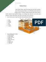 Struktur Primer GS