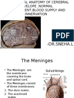 Radiology Meninges Ppt