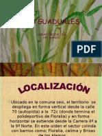 Caracterizacion de Mis Guaduales -Barrio