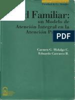 13SaludFamiliar Hidalgo Carrasco1999