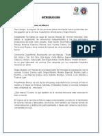 Proyectoeconomia de La Empresa Mariana