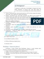 01 - Como Estudar Língua Portuguesa