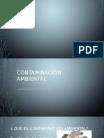 Cotaminación Ambiental.pptx